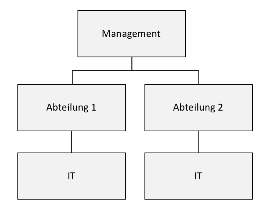 Dezentrale it organisation