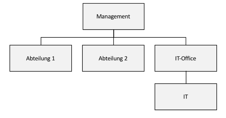 Projekt IT-Organisation