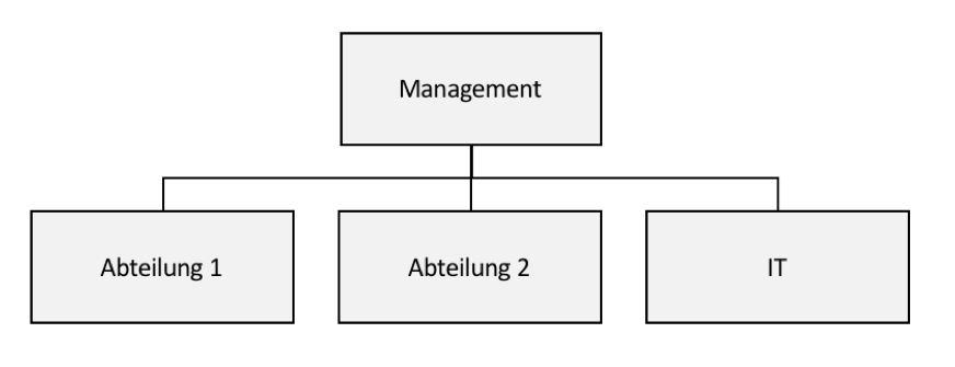 zentrale IT Organisation
