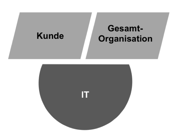 IT-ORGANISATION definition