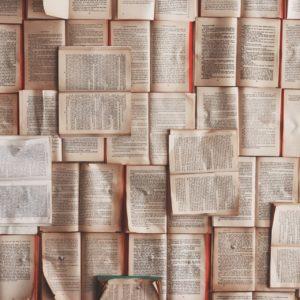 Literaturverwaltung – das sind die Möglichkeiten!