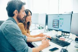 Softwareentwickler-Verantwortung
