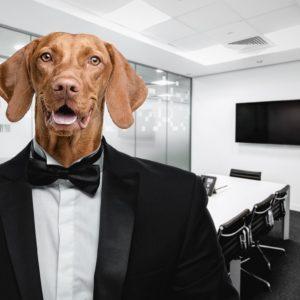 Warum sind Top-Manager trotz vieler Berater oftmals wenig reflektiert?