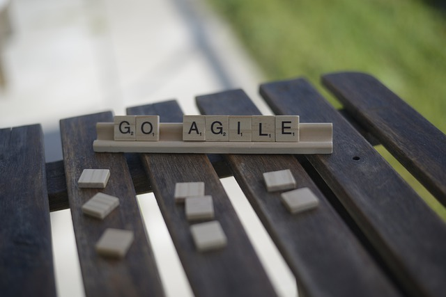 kritik an scrum agile